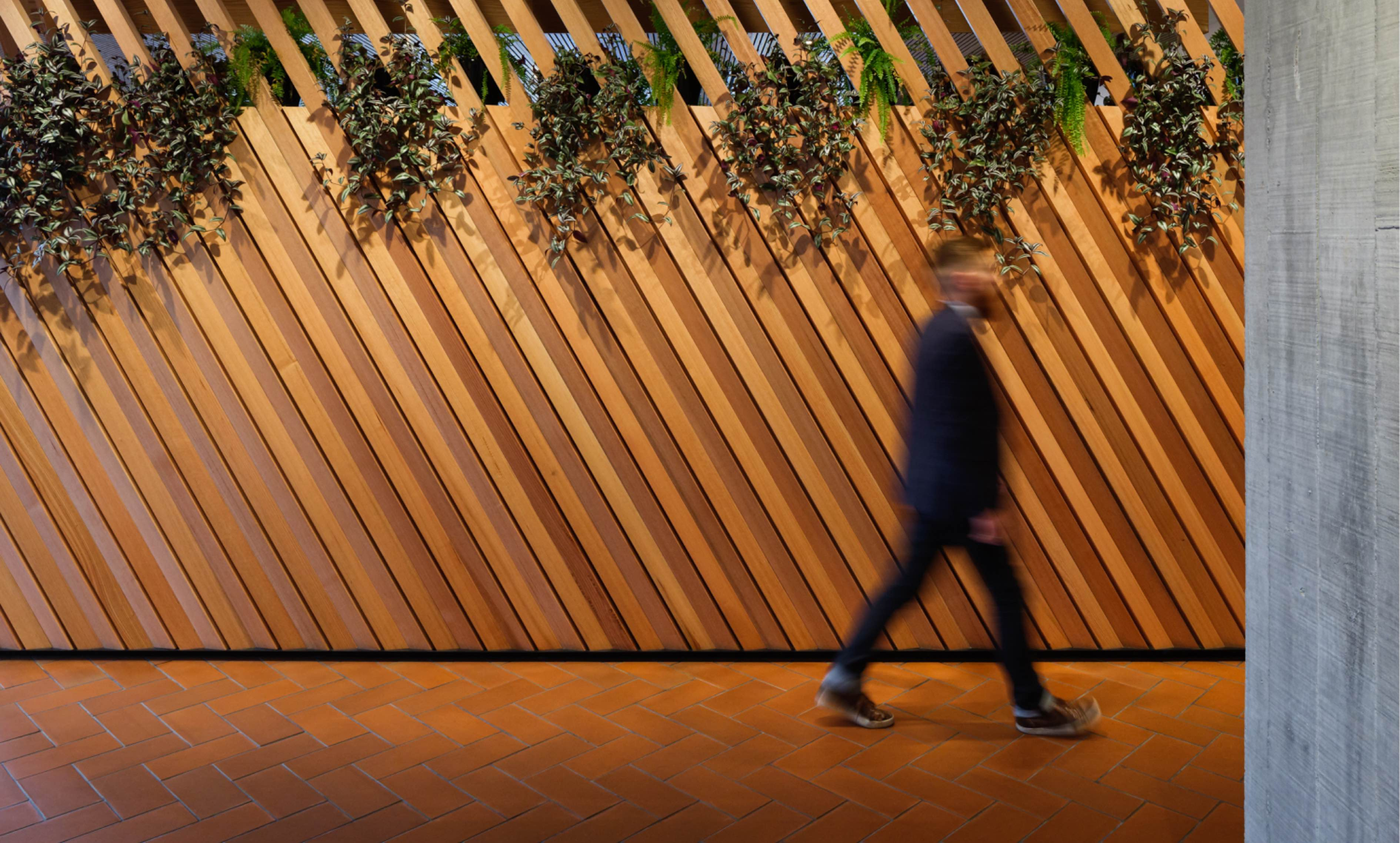 Suited man, out of focus, walks past slatted wooden wall with planting growing through slats